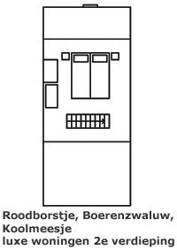 Roodborstje, Boerenzwaluw en Koolmeesje - indeling van de zolderkamer