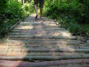 Het Blotevoetenpad - lopen op gras, over hout, op aarde, op zand ....