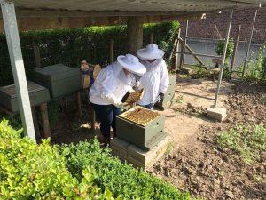 Imkers en bijen zomaar naast de deur
